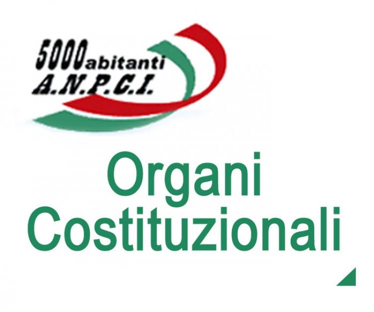 Organi costituzionali
